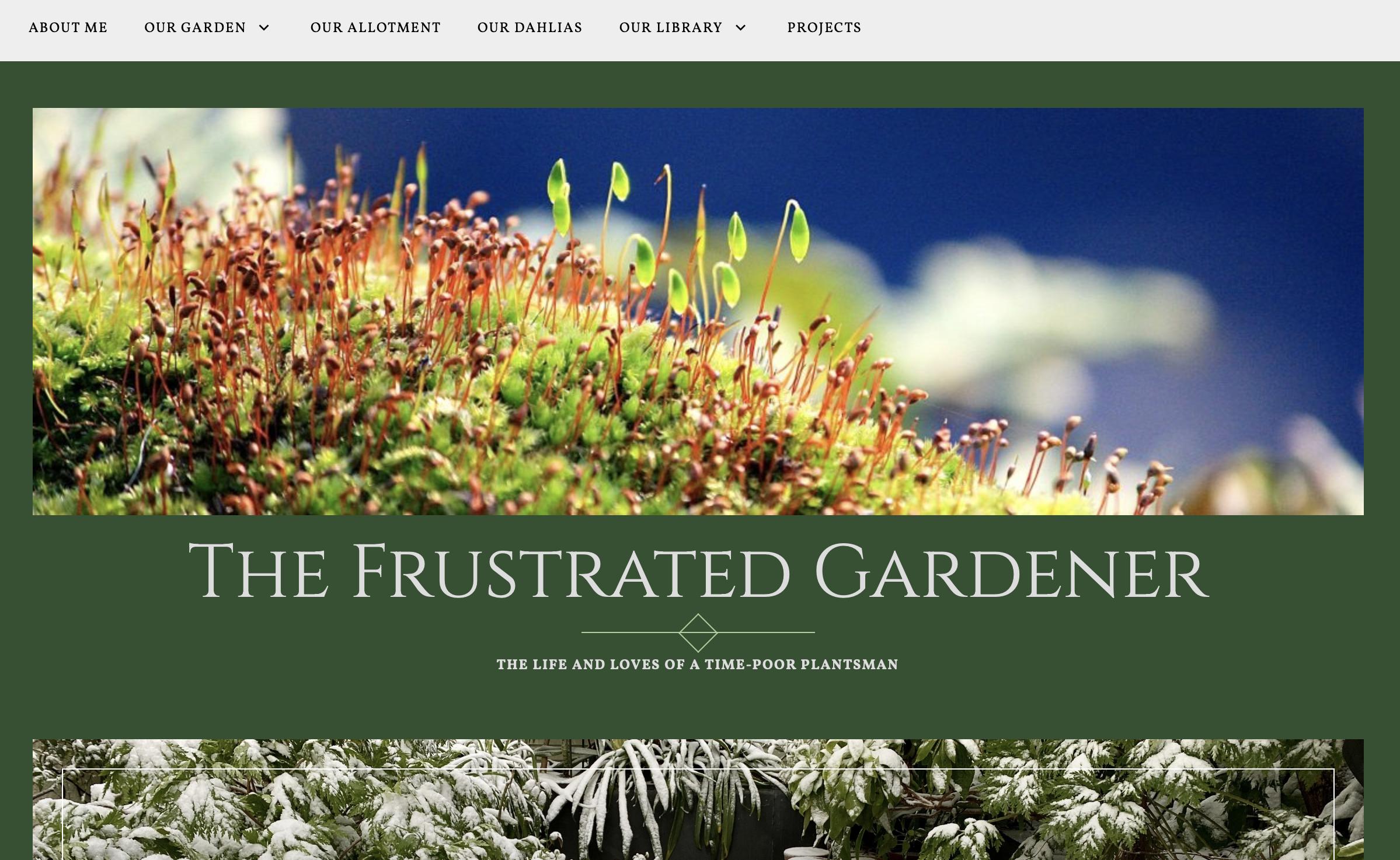 The Frustrated Gardener