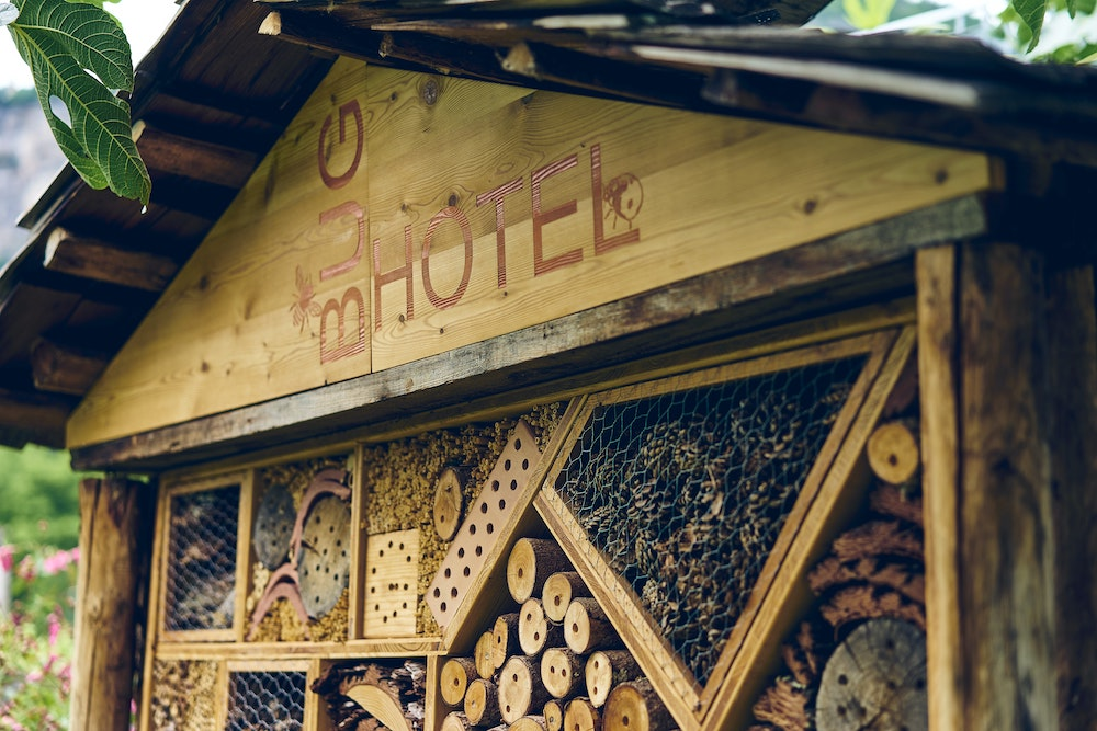 Why build a bug hotel with your kids?