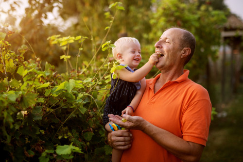 How-to-make-your-garden-child-friendly