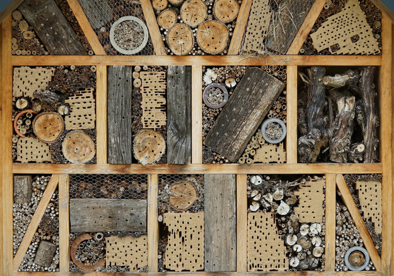Build-A-Bug-Hotel-With-The-Kids
