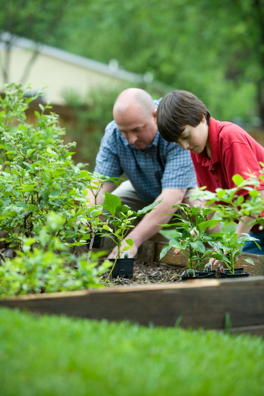 How to get kids gardening?