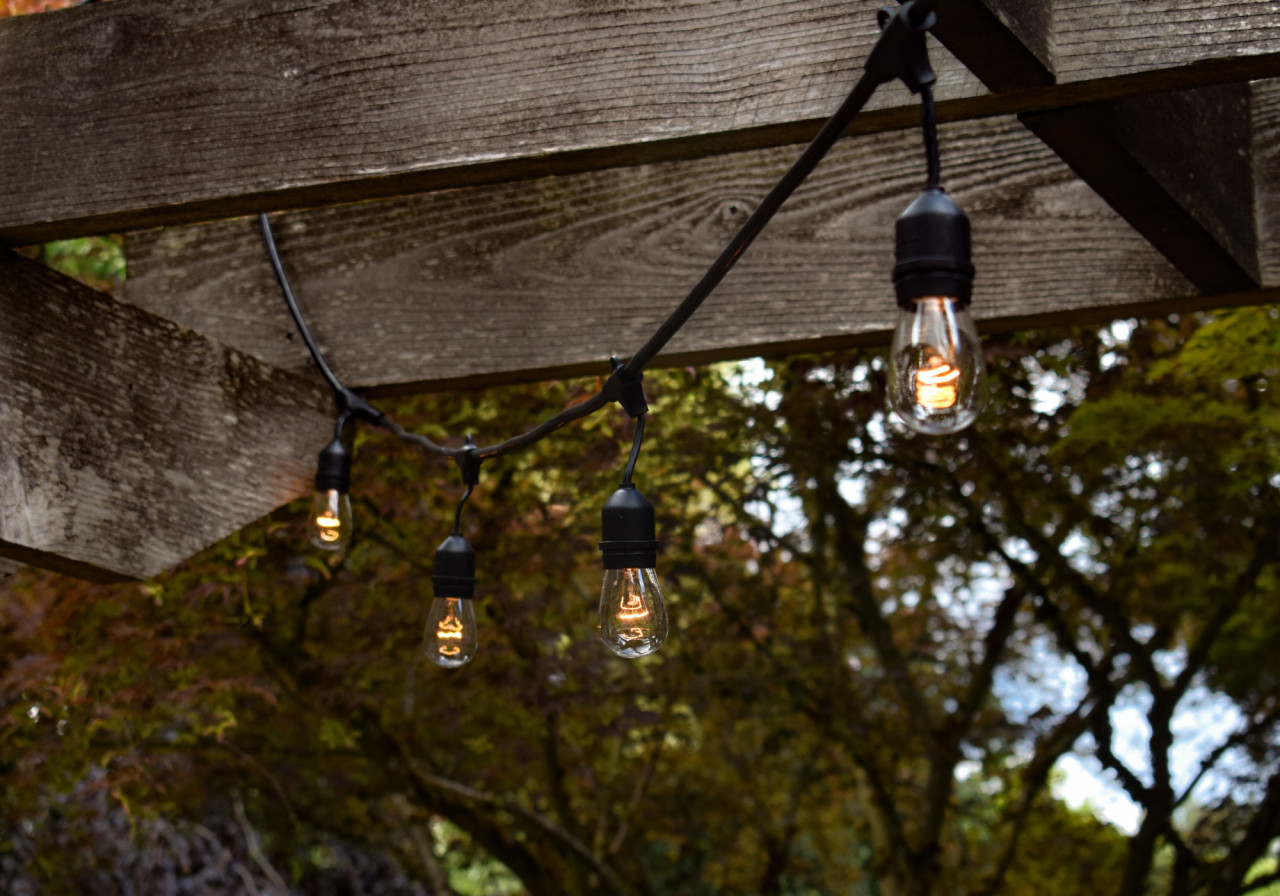 The-Lazy-Susan-Guide-to-Garden-Lighting