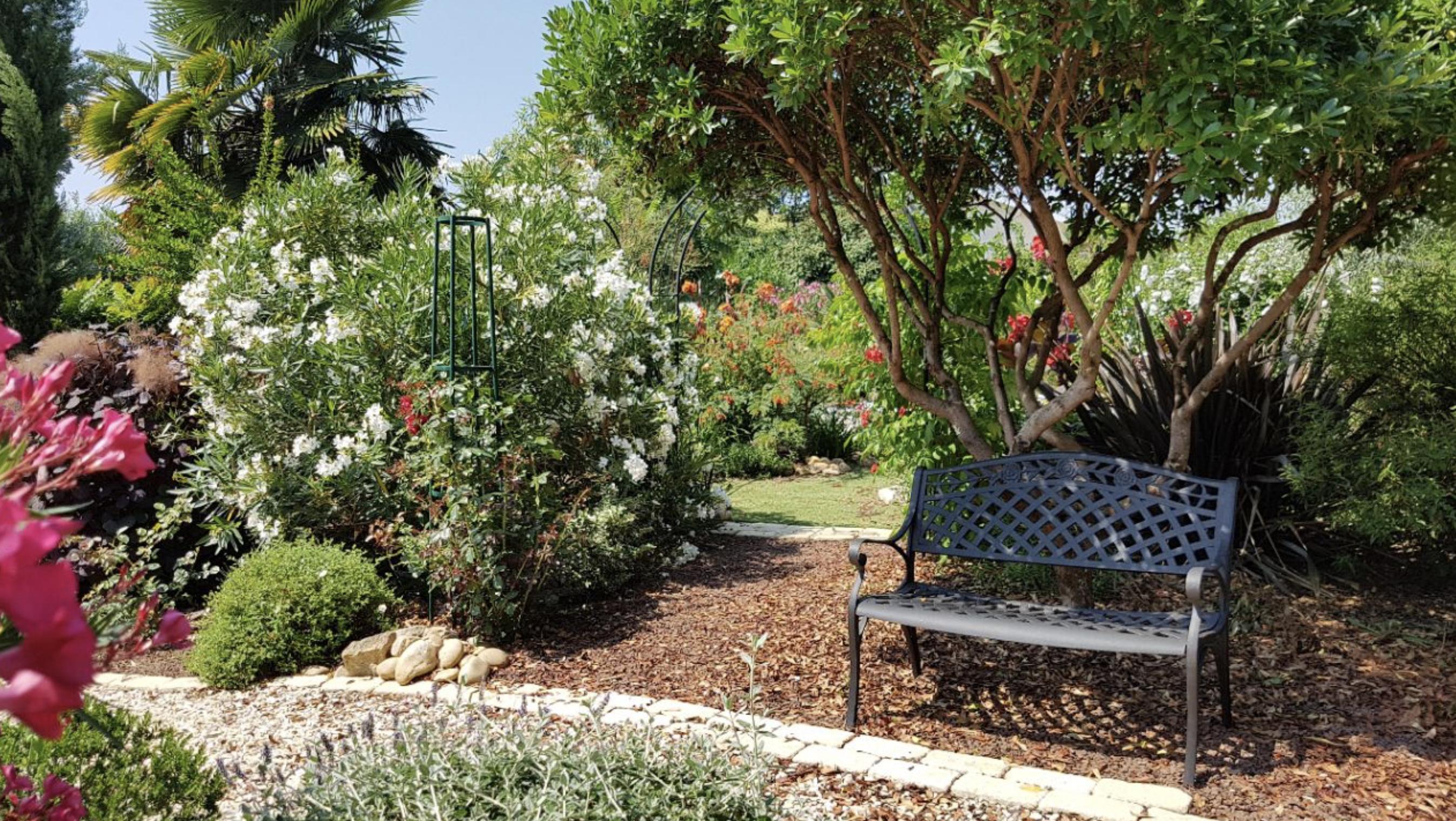 The Garden Bench As A Focal Point