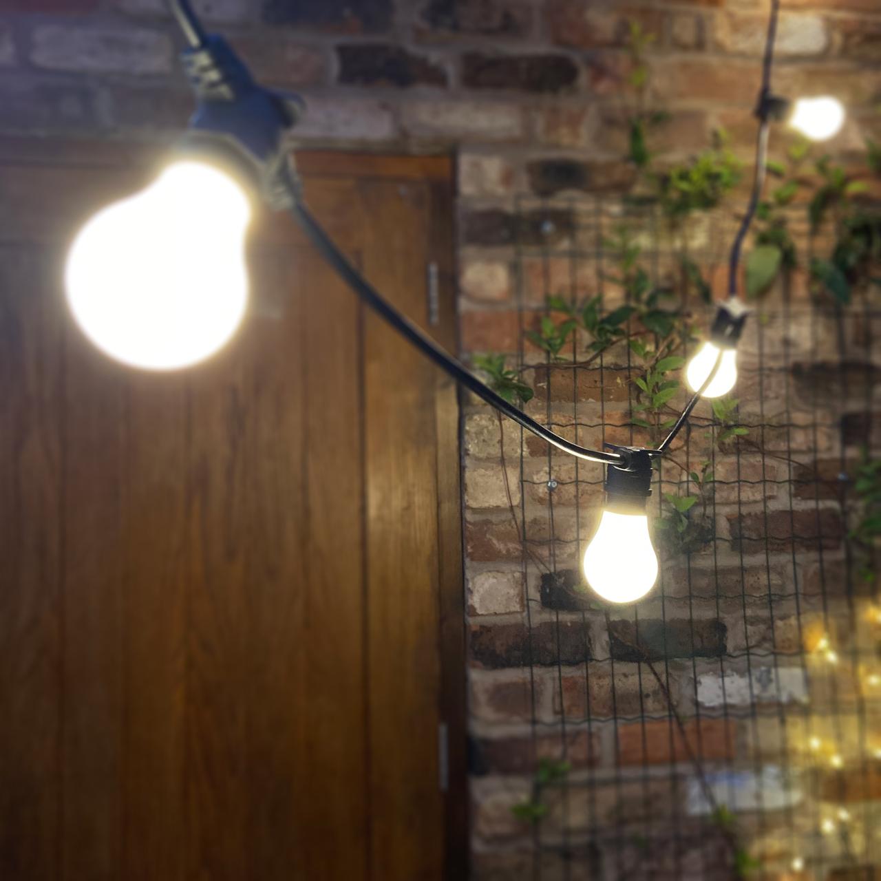 Ultra LEDs Outdoor Festoon Bulb Lights