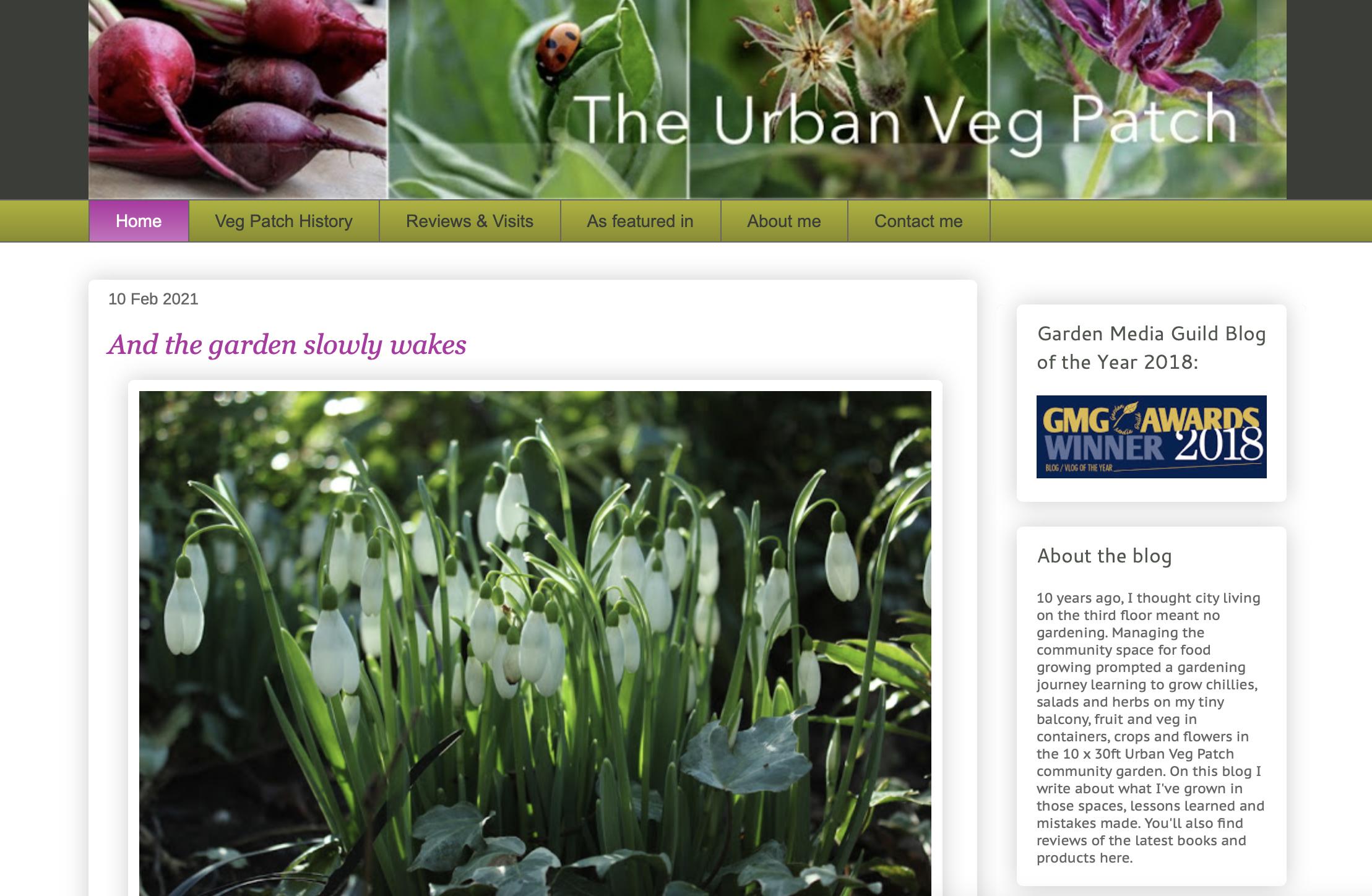 The Urban Veg Patch