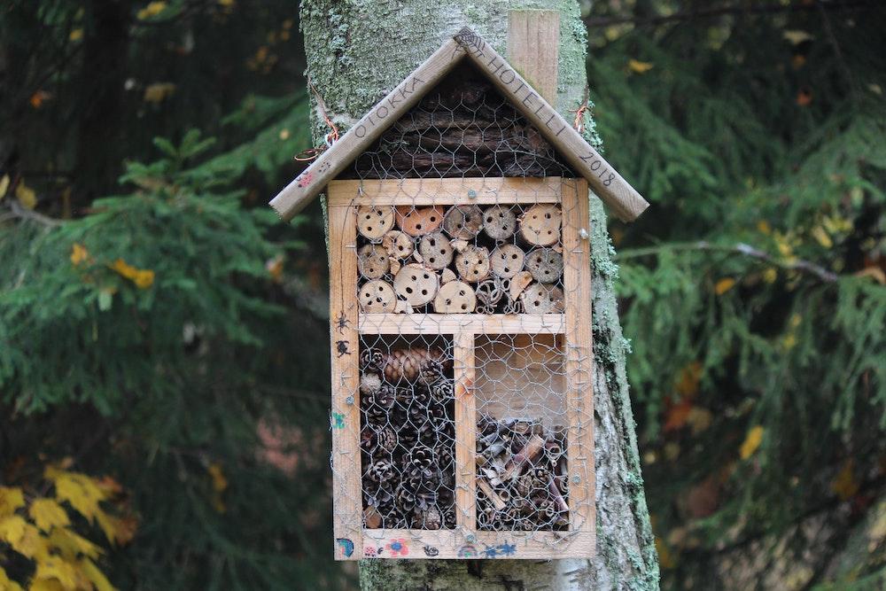 The English Garden's hibernation habitat