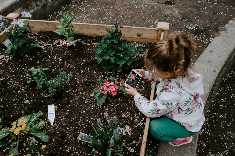 Gardening Projects with Kids